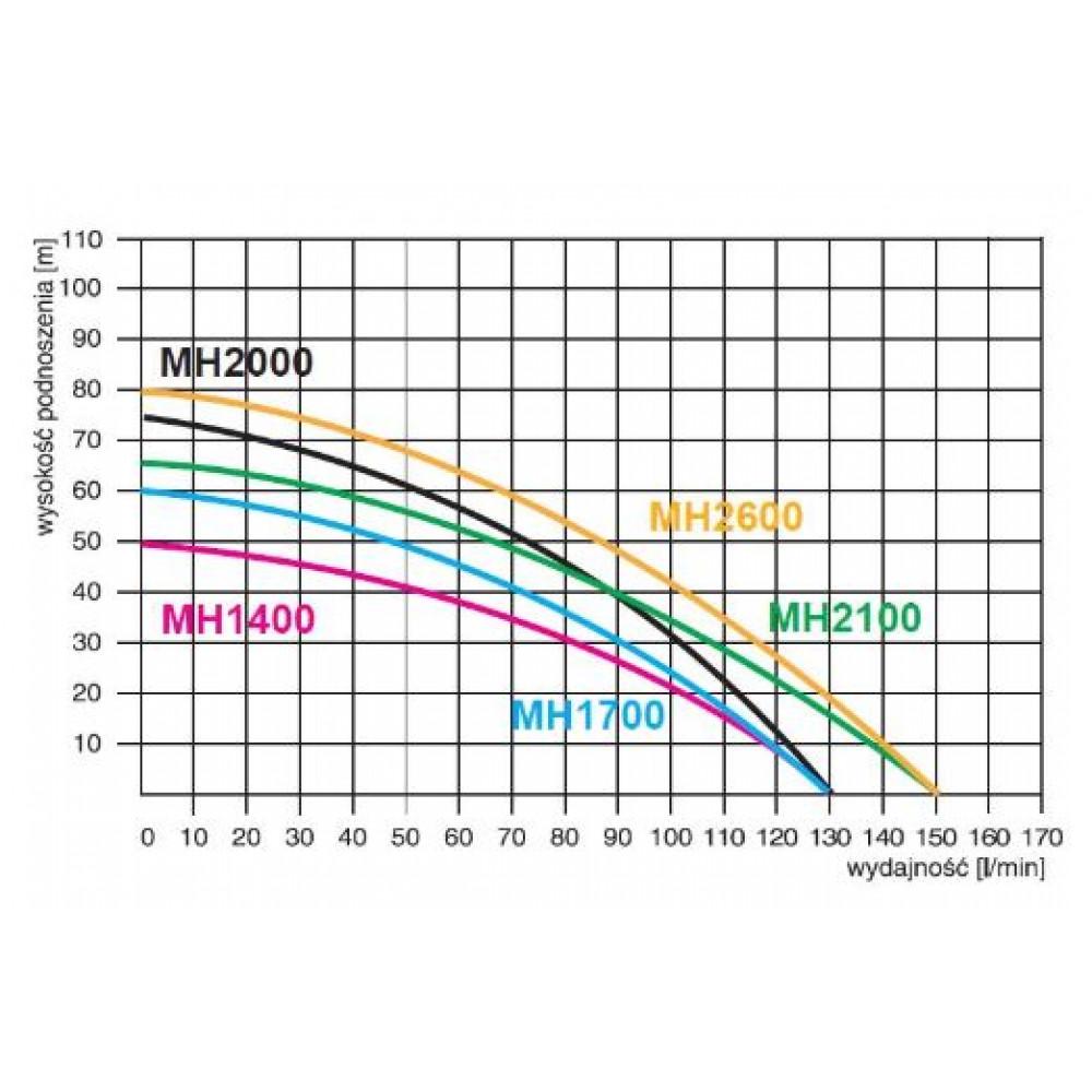 Поверхностный насос Omnigena MHI 1400 INOX